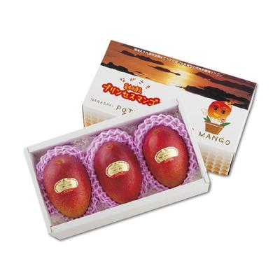 長崎鉢植えプリンセスマンゴー