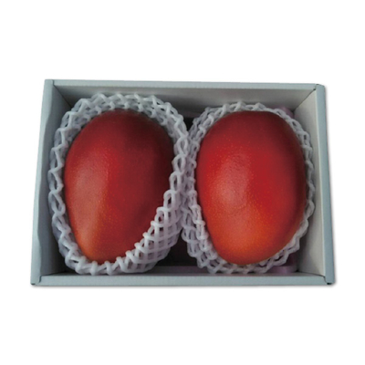 「南国フルーツ」 宮崎完熟マンゴー
