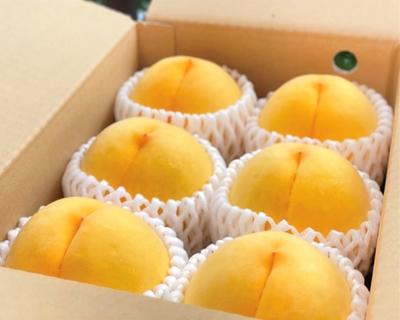 【2K】黄桃-秀