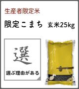 限定こまち 玄米25kg