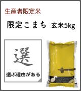 限定こまち 玄米5kg