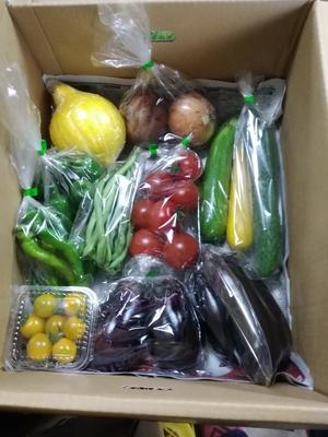 おまかせ夏野菜+もち麦300gセット(おまけ付き)送料込み