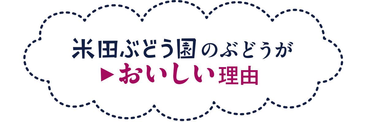 米田ぶどう園のぶどうがおいしい理由