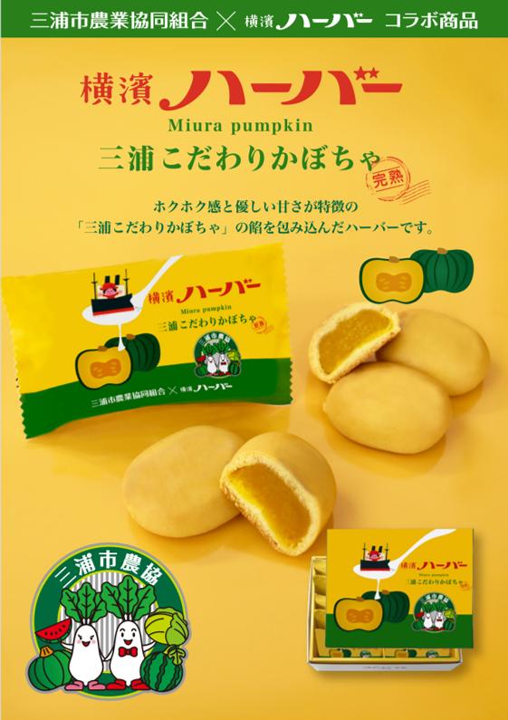 【数量限定】横濱ハーバー 三浦こだわりかぼちゃ 10粒入り