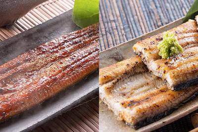 国産鰻 食べ比べセット