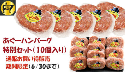 【限定商品】あぐーハンバーグ10個セット