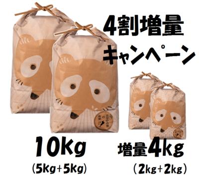 たなかみ米コシヒカリ10kg+4kg【40%増量】クーポン対象