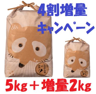 たなかみ米コシヒカリ 5kg+2kg【40%増量】クーポン対象