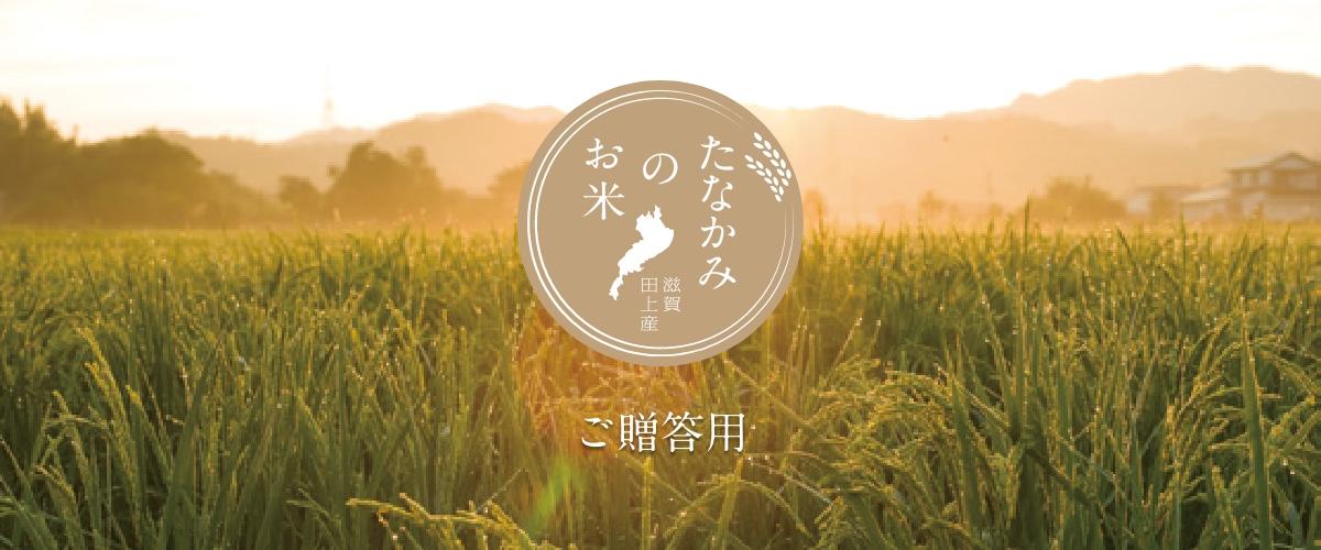 たなかみのお米 ご贈答用