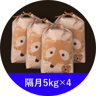 たなかみ米 精米 定期購入 隔月 20kg