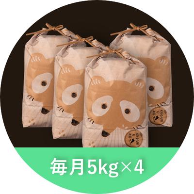 たなかみ米 精米 定期購入 毎月20Kg