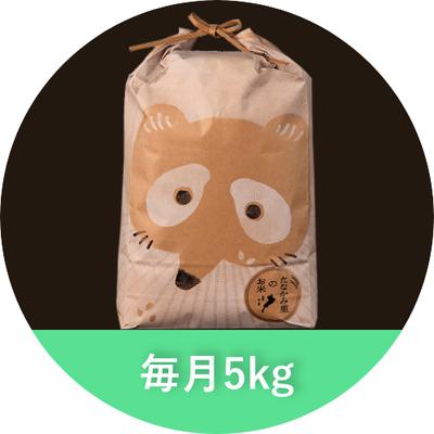 たなかみ米 精米 定期購入 毎月5kg