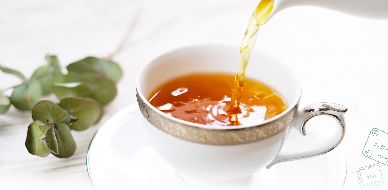 セイロン紅茶専門店 mistywick(ミスティーウイック)