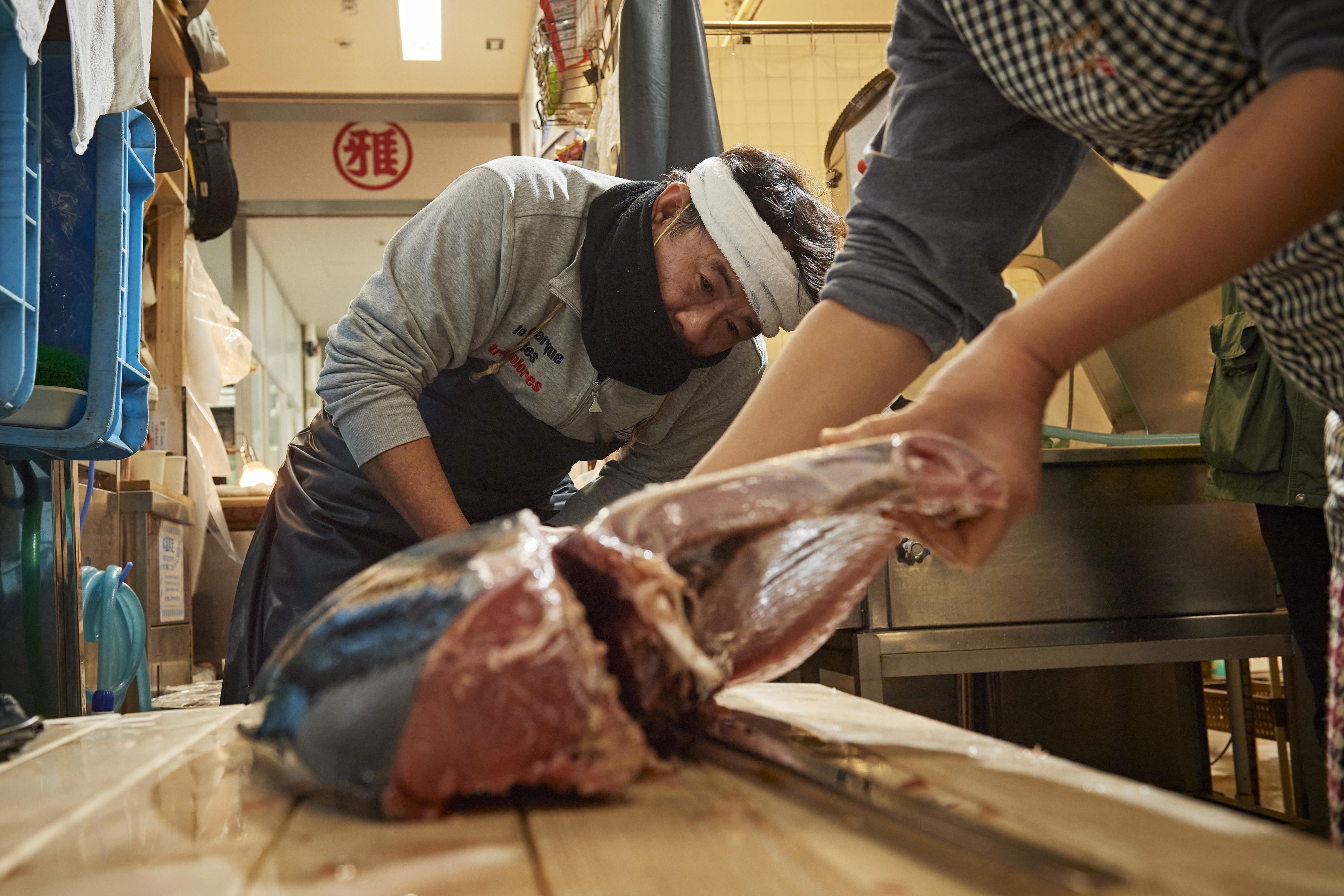 豊洲市場で競り落としたマグロをおろしています