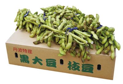 黒大豆枝豆 2kg箱
