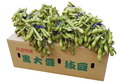 黒大豆枝豆 3kg箱