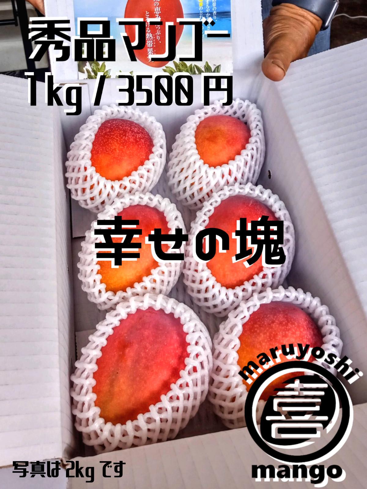 【家庭用】幸せの塊 マンゴー(アーウィン種) 1kg