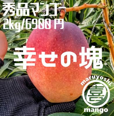 【秀品】幸せの塊 マンゴー(アーウィン種) 2kg 4~6個