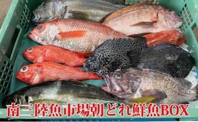 南三陸魚市場 当日水揚げ丸魚 16,200円コース
