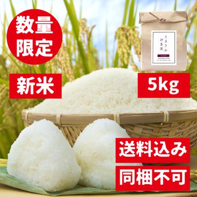 【5kg】みま米(コシヒカリ精米)