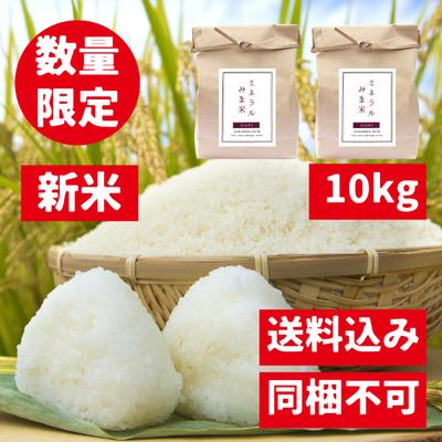 【10kg】みま米(コシヒカリ精米)