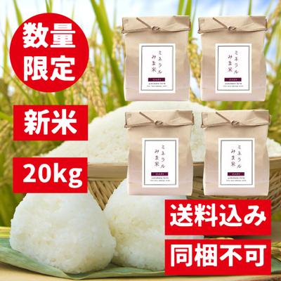 【20kg】みま米(コシヒカリ精米)