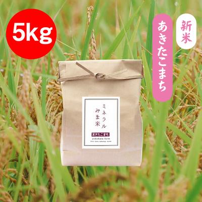 あきたこまち【5kg】みま米(精米)