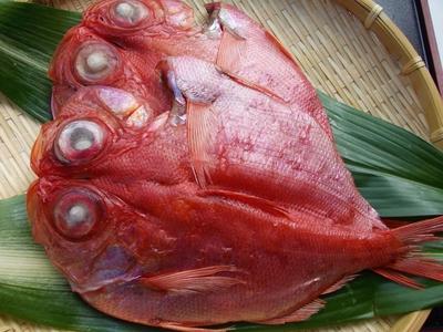 金目鯛(大1枚)