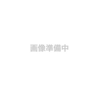 りんご「サンふじ」10kg32玉〜36玉