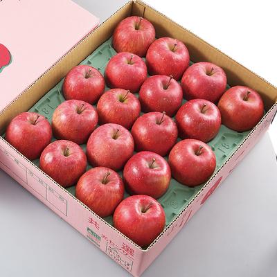 りんご「サンふじ」5kg16玉〜18玉