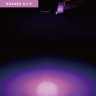 NEWハイパワーダウンライト 12/24V共用 ピンク534425