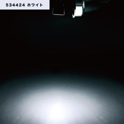 NEWハイパワーダウンライト 12/24V共用 ホワイト534424