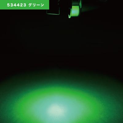 NEWハイパワーダウンライト 12/24V共用 グリーン534423