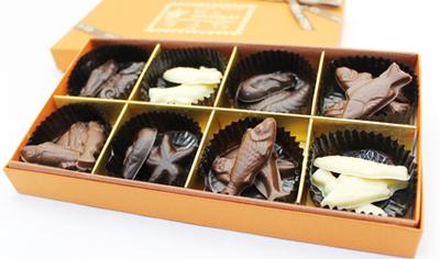 おさかな貝チョコレート
