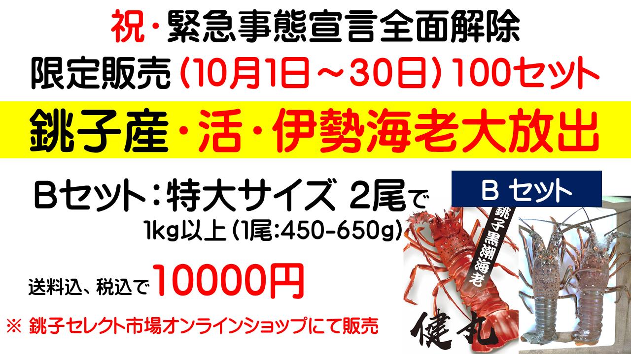 限定販売(10月1日~30日)100セット銚子産・活・伊勢海老Bセット