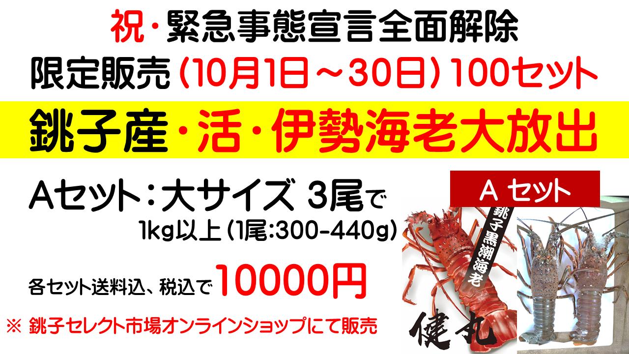 限定販売(10月1日~30日)100セット銚子産・活・伊勢海老Aセット