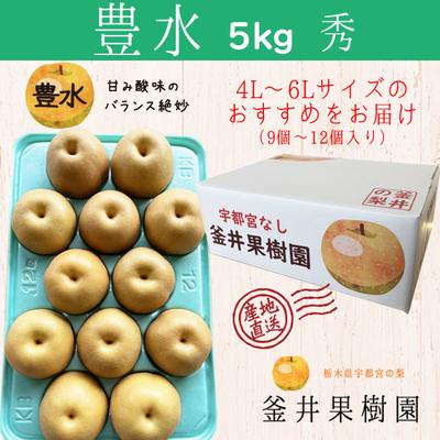 豊水梨【5kg】秀