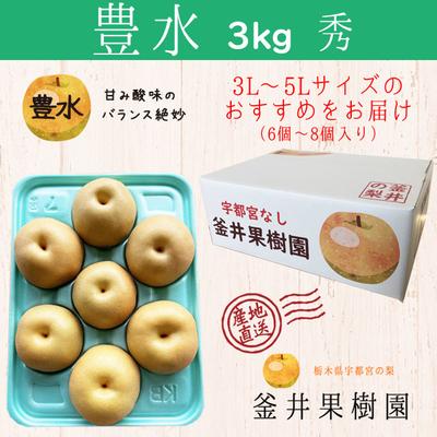 豊水梨【3kg】秀