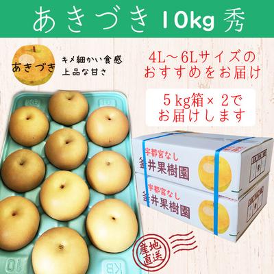 あきづき梨【10kg(5kg×2箱)】秀