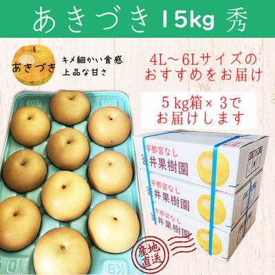 あきづき梨【15kg(5kg×3箱)】秀
