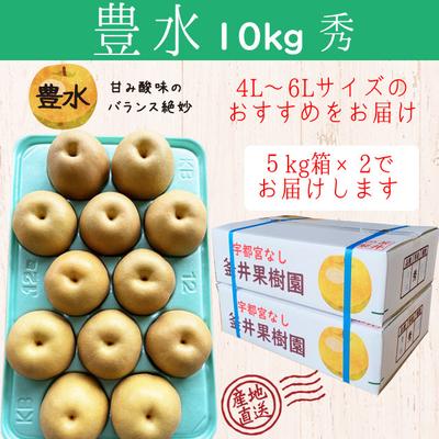 豊水梨【10kg(5kg×2箱)】秀