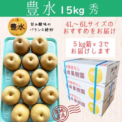 豊水梨【15kg(5kg×3箱)】秀