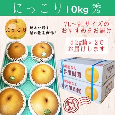 にっこり梨【10kg(5kg×2箱)】秀