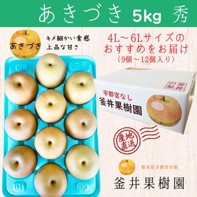 あきづき梨【5kg】秀