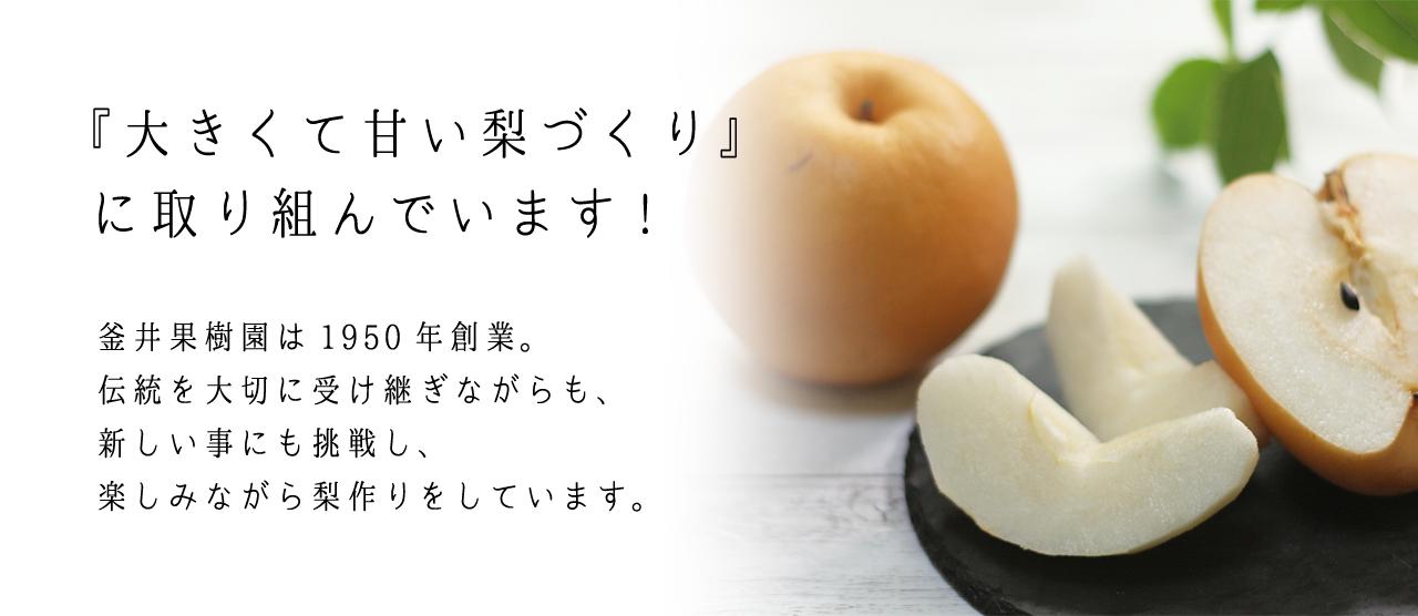 梨作りの一年