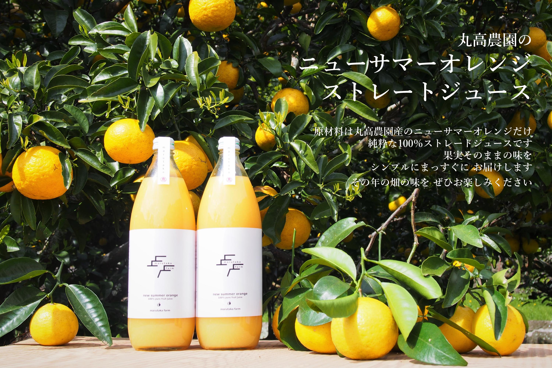 丸高農園のニューサマーオレンジジュース
