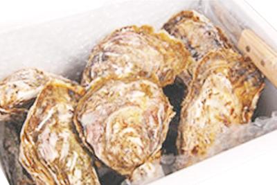 【生食用】広島地御前 峠水産 殻付かき 【神の一粒】 『極み』(10個入)