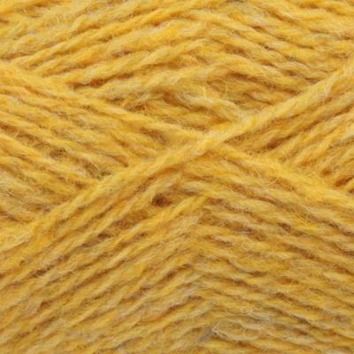 1160 Scotch Broom