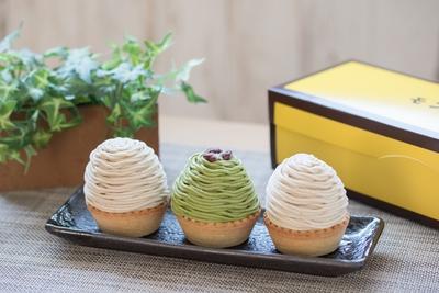 栗ときどき抹茶モンブラン【3個】
