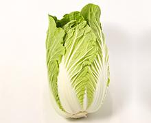 軽井沢産白菜